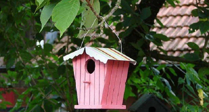 painted-bird-house