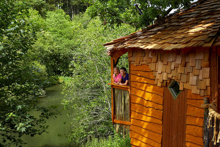 forest-holidays-treehouse-view